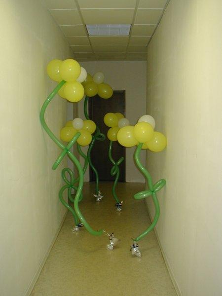 Воздушные шары Ярославль