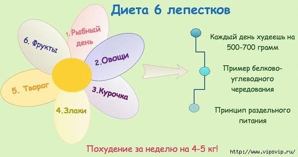 5745884_dieta_6_lipestkov (604x320, 71Kb)