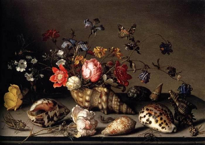Натюрморт цветы, раковины, и насекомые (700x497, 57Kb)