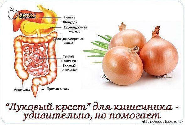 5745884_lykovii_krest_dlya_zdorovya (590x400, 134Kb)