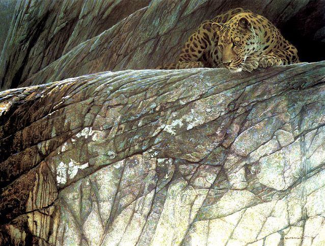 Robert-Bateman.-Animalisticheskaya-zhivopis.-Leopard (638x482, 433Kb)
