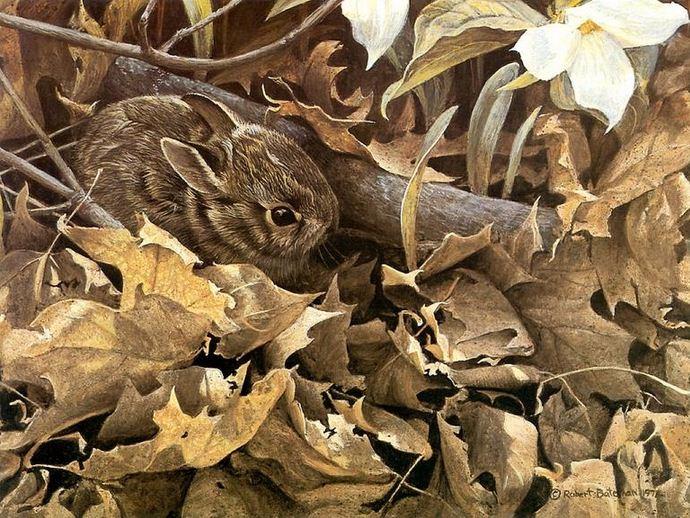 Robert-Bateman-Samaya-luchshaya-animalisticheskaya-zhivopis (1) (690x518, 450Kb)