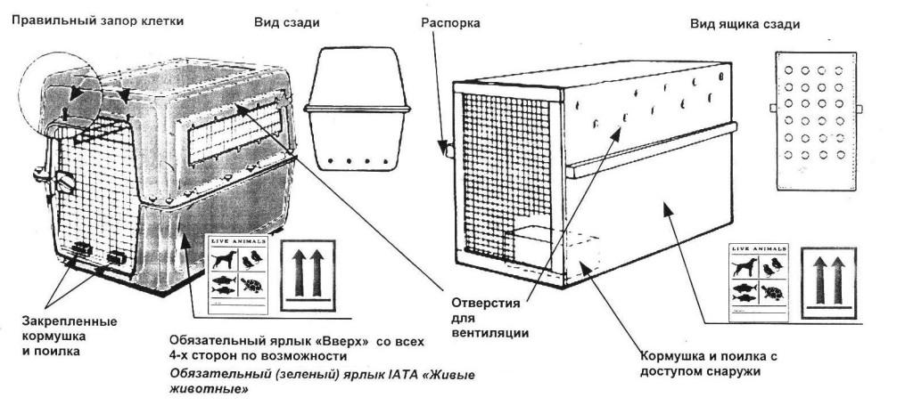 Требования к клеткам для перевозки животных в Шереметьево