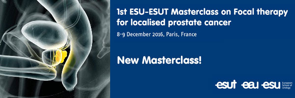 1st ESU-ESUT Masterclass on Focal therapy for localised prostate cancer