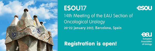 Registration for the 14th Meeting of the EAU Section of Oncological Urology (ESOU17) is now open!