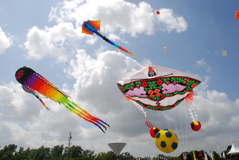 kite festival Hermann park conservancy kite festival frequently asked questions who puts this event on and who benefits hermann park conservancy (hpc), with support from the kite festival chairs, host committee.