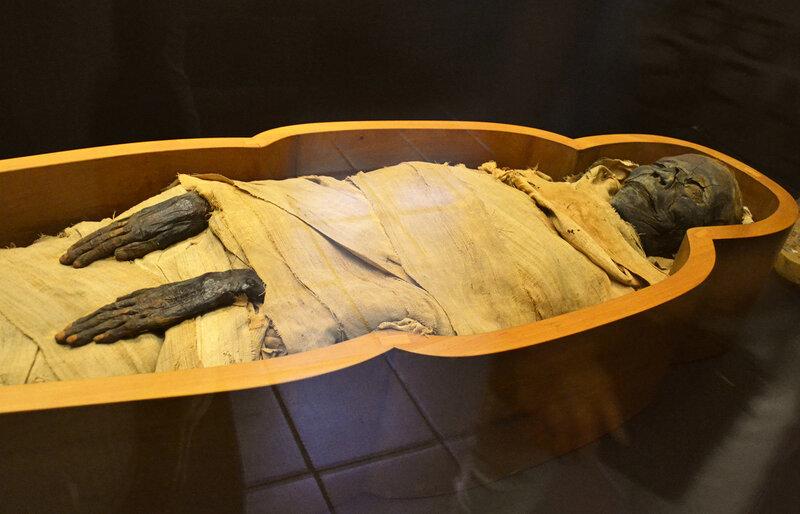 Мумия в Египетском музее