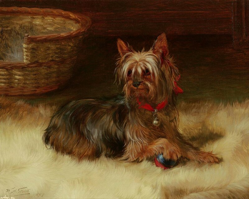 Художник-анималист William Henry Hamilton Trood 1860 - 1899 г.г