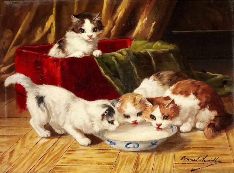 Котята у блюдца с молоком..jpg