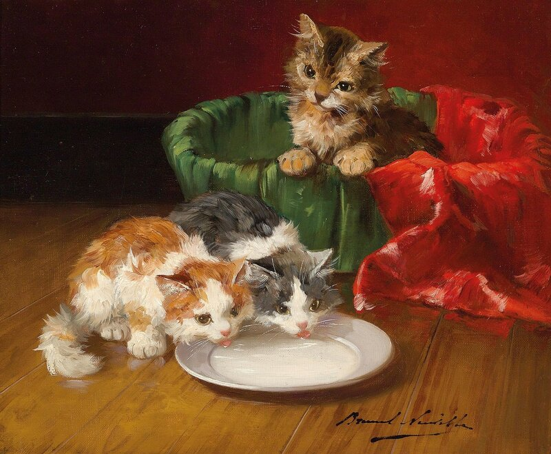 Котята у блюдца с молоком.jpg