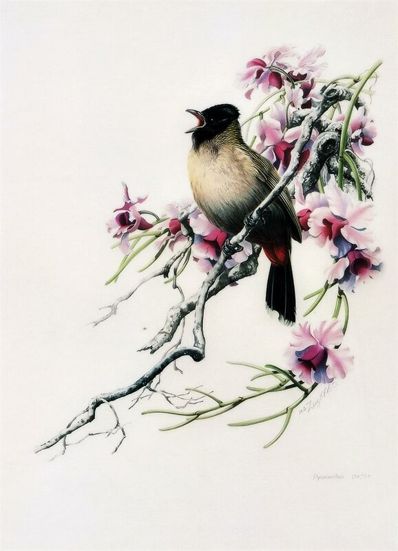 Как птицы на женщин схожи, схожи! Художник Zeng Xiao Lian