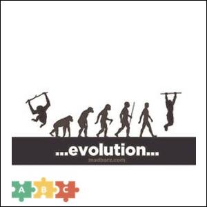 puzzle_evolution