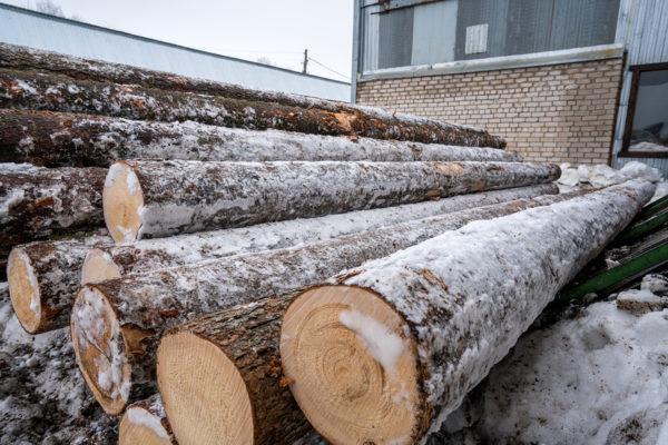 В Краснотурьинске построят лесоперерабатывающий завод