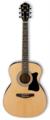 IBANEZ VC50NJP-NT, набор из акустической гитары, тюнера, чехла и аксессуаров IBANEZ VC50NJP-NT, набор из акустической гитары, тюнера, чехла и аксессуаров