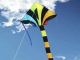 Hasi Воздушный змей «Тигр 117х76»