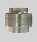 Клапан обратный пружинный муфтовый RT25 Ду50
