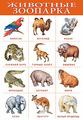 Плакат Дрофа-Медиа Животные зоопарка