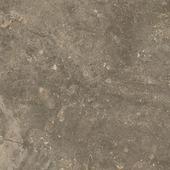 Плитка из керамогранита ColiseumGres Керамогранит червиния земля