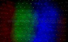 Neon-Night 215-049