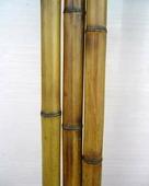 Бамбук обожженный d 25-30мм L=2,8-3м