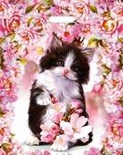 """Пакет полиэтиленовый """"Котенок в цветах"""", 36,5смх48см, размер большой (Miland)"""
