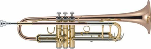 J. Michael TR-450 Труба Bb, покрытие золотой лак, в кейсе