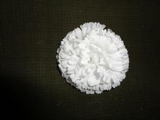 Цветочная головка гвоздика белая Ø8см (5шт)