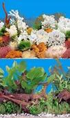 Фон для аквариума BARBUS двухсторонний (Растительный мир/Белые кораллы) высота 40см, цена за 1м