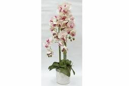 Декор.цветы Орхидеи св.розовые в керам.вазе Dream Garden
