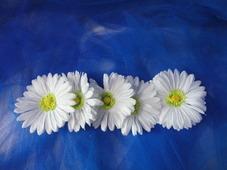 """Цветочная головка """"Ромашка белая"""" Ø12см /ткань/махровая серединка (5шт)"""