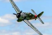 Самолет Freewing