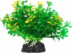 """Растение для аквариума Уют """"Микрантемум зелено-желтый"""", высота 11 см"""