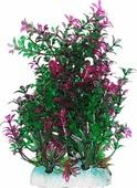 """Растение для аквариума Уют """"Гамфрена зелено-фиолетовая"""", высота 20 см"""