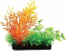 """Растение для аквариума Laguna """"Композиция из аквариумных растений"""", 15 см"""
