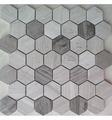 Мозаика IMAGINE LAB мозаика Мозаика SHG11488P из натурального мрамора