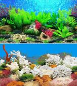 Фон для аквариума BARBUS двухсторонний (Растительный мир/Белые кораллы) высота 60см, цена за 1м
