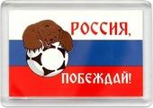 Магнит сувенирный Miland Футбольная страна Россия, побеждай, Т-4001, мультиколор