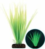 """Растение для аквариума Laguna """"Бликса"""", 20 см"""