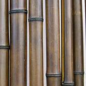 Бамбук шоколадный лакированный d 40-50мм L=2,8-3м
