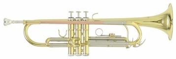 Труба Bb Roy Benson TR-202 RB701.070