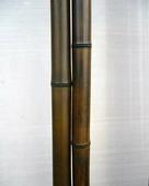 Бамбук шоколадный лакированный d 25-30мм L=2,8-3м