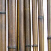 Бамбук шоколадный лакированный d 30-40мм L=2,8-3м