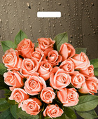 Пакет с вырубной ручкой 45*38см (60мкм) Розы после дождя. В упаковке 50 шт.