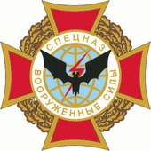 Наклейка Военная эмблема 10 10 х 10 см