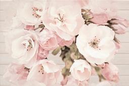 Cersanit Sakura Декор Квитка 450x300