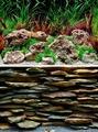 Фон для аквариума BARBUS двухсторонний (Каменная стена/Дикая вода) высота 30см, цена за 1м