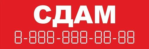 """Постер ОранжевыйСлоник информационный """"сдам"""""""