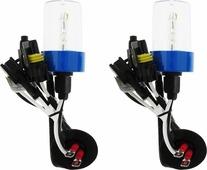 """Лампа автомобильная ксеноновая Clearlight """"Xenon Premium+150%"""", цоколь H7, 5000 К, 35 Вт, 2 шт"""