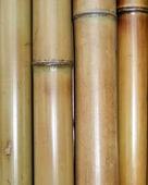 Бамбук обожженный d 70-80мм L=2,8-3м