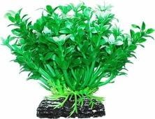 """Растение для аквариума Уют """"Микрантемум зелено-белый"""", высота 11 см"""